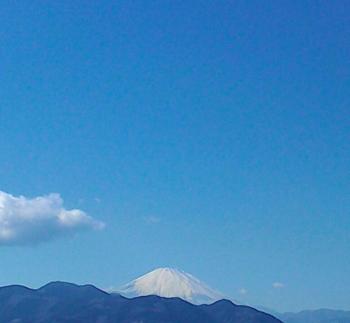 新松田.png