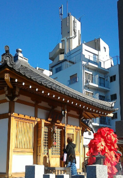 東覚寺1.png