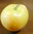林檎.png