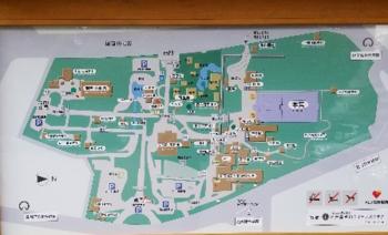厚田神宮1.png